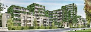 risparmio energetico con giardini verticali